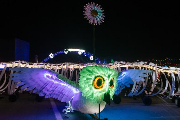 OWL_EDC_EDGAR_SNAKE